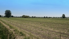 Farmer Cultivating Crops on a Sunny Day Stock Footage