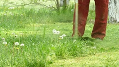 Lawnmower mowing grass Stock Footage