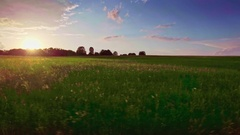 Beautiful landscape aerial panorama horizon pastures green grass sky sunset Stock Footage