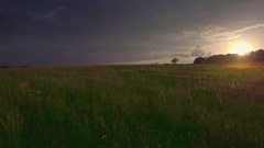 Beautiful landscape aerial panorama nature pasture green grass cloudy sky sunset Stock Footage