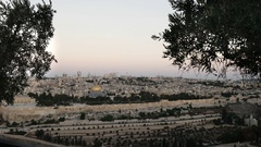 Dome of the rock at dawn framed by olive trees in jerusalem Stock Footage