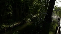 Bamboo garden, track along garden path and water sprinkler Stock Footage