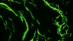 Neon Green Water - 7 Stock Footage