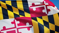 Maryland (U.S. state) flag in slow motion seamlessly looped with alpha Stock Footage