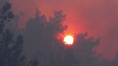 Grim, depressing and worrying red sun and smoke during fire Stock Footage