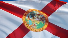 Florida (U.S. state) flag in slow motion seamlessly looped with alpha Stock Footage
