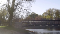 Tracking Shot Of Male Athlete Running Across Bridge In Park, Beautiful Fall Day Stock Footage