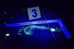 Footprint under UV light on crime scene Stock Photos