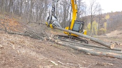 Excavator destroys trees and damages environment Stock Footage
