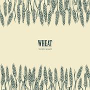 Field of Wheat vector illustration Stock Illustration