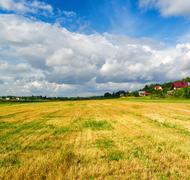 Field of cut grass Stock Photos