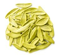 Dried italian pasta with spinach flavour. Stock Photos