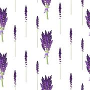 Lavender seamless pattern. Provence violet bouquet bush Stock Illustration