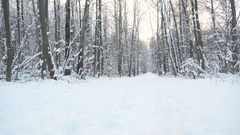 Slow Motion Young Sportsman Running Through Snowy Forest. Stock Footage
