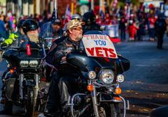 Veterans Day Parade 2015 Kuvituskuvat