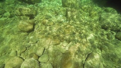 Sunrays penetrate the bottom of the sea and illuminate stones in slow motion Stock Footage