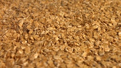 From palm of hand poured oatmeal. Stock Footage