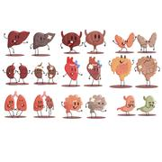 Human Internal Organs Healthy Vs Unhealthy Set Of Medical Anatomic Funny Cartoon Stock Illustration
