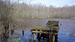 Decaying broken rotting boat dock, lake in forest, medium side shot, Germany Stock Footage