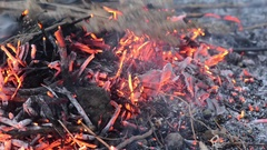 Hot fireplace full of wood and fire. Fire burning. Time lapse Stock Footage