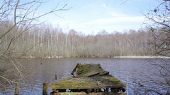 Decaying broken rotting boat dock, lake in forest, medium shot, Germany Stock Footage