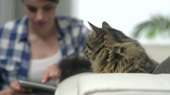 Woman and cat in the living room Stock Footage