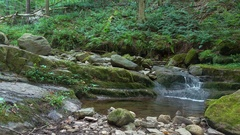 Relaxing Dunnfield Creek in New Jersey Stock Footage