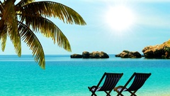 Relax on the beach under palm trees in the tropics Travel background. Stock Footage