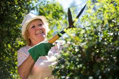 Senior woman trimming plants with pruning shears Stock Photos