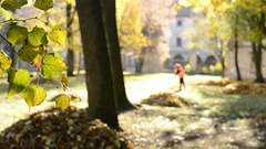 Workers rake leaves out in the autumn park. Stock Footage