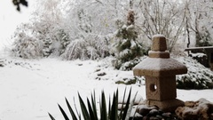 Japanese garden with a lantern in the winter. Stock Footage