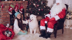 Girl sitting beside Santa Claus, and strokes the dog Samoyed Stock Footage