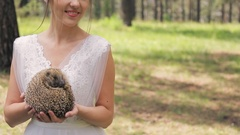 Nice hedgehog in bride hands on photosession in wedding day outdoors Stock Footage