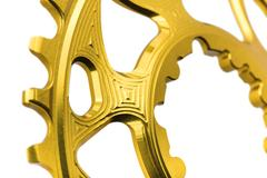 Golden oval chainring detail at white background, isolated Stock Illustration