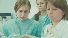 Novosibirsk 2016: Senior laboratory shows students clean beaker Stock Footage