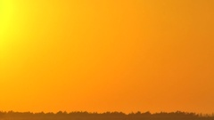 The bright sun gradually turns yellow and comes for trees on the horizon. Stock Footage