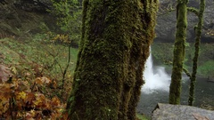 Moving shot revealing a waterfall in a lush forest Stock Footage