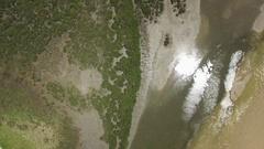 Forward flight lookin straight down at mangroves tilting the camera Stock Footage