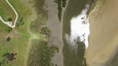 Forward flight lookin straight down at shallow creek and mangroves Stock Footage