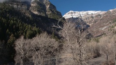 Panning view through trees with no leaves viewing snow capped mountain Stock Footage