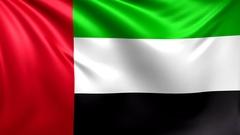 Flag of UAE. Seamless looped video, United Arab Emirates footage Stock Footage