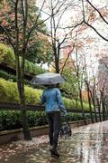 Man with handbag and umbrella walking on pedestrian walkway Stock Photos