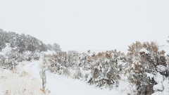 Snow falling on sagebrush-lined country lane Stock Footage