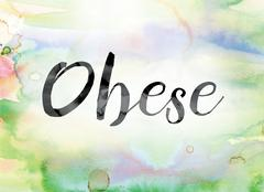 Obese Colorful Watercolor and Ink Word Art Stock Illustration