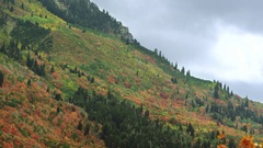 Static view of colorful mountain side during Fall Stock Footage