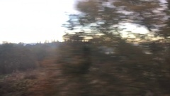 POV - Window Train Travels Past Beautiful Morning Light - Nature Scene Stock Footage