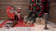 A young girl wrapping gifts with bulldog at xmas Stock Footage