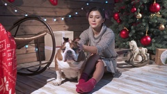 A woman petting her unny bulldog at xmas eve Stock Footage