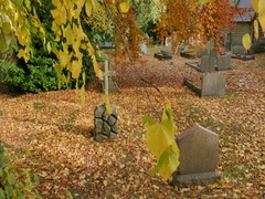Autumn Leaves & Brackenfield Church, Derbyshire Stock Footage