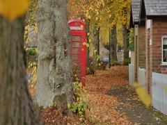 Autumn Leaves & Red Telephone Box at Teversal, Nottinghamshire Stock Footage